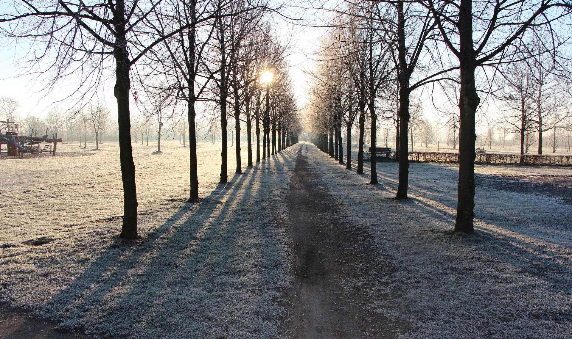 Rathaus_Startseite_Jahrtausendallee_Winter